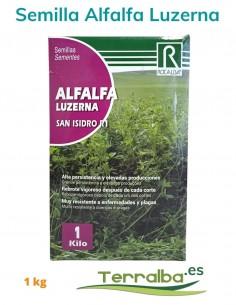 Semillas Alfalfa Luzerna...