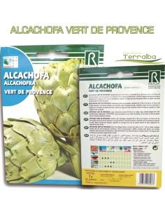 SEMILLAS ALCACHOFA VERT DE...
