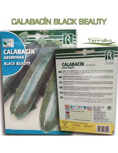 SEMILLAS CALABACÍN BLACK BEAUTY