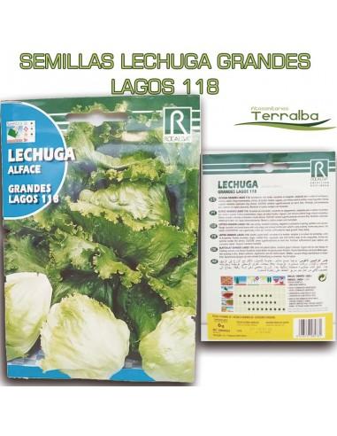 SEMILLAS LECHUGA GRANDES LAGOS 118