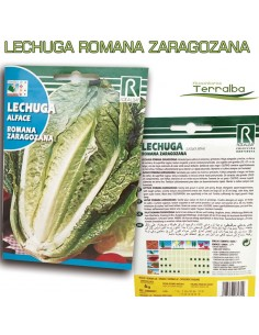 SEMILLAS LECHUGA ROMANA...