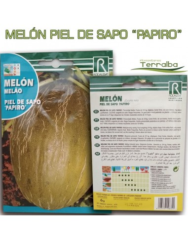 SEMILLAS MELÓN PIEL DE SAPO PAPIRO