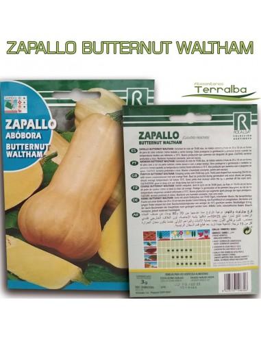 SEMILLAS ZAPALLO BUTTERNUT WALTHAM