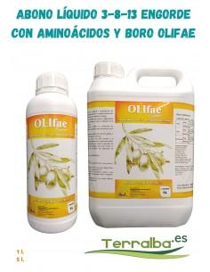 AMINOÁCIDOS Y BORO OLIFAE...
