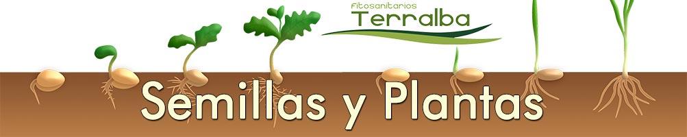 Semillas y Plantas Terralba